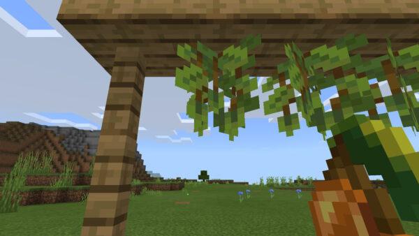 グロウベリー(栽培方法3)
