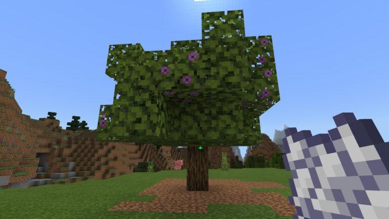 ツツジの木1