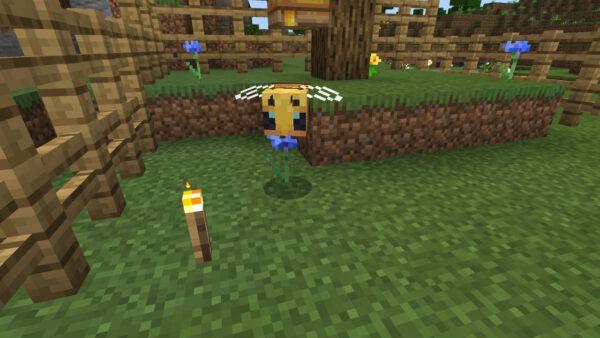 ミツバチを湧かせる(ミツバチ正面)