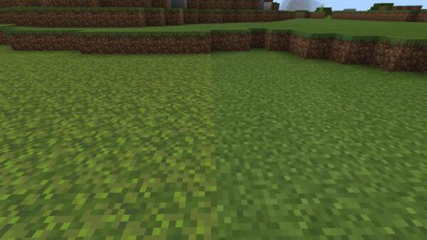 苔カーペット草ブロック比較