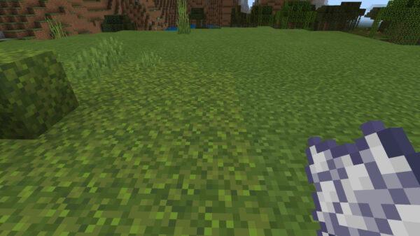 苔ブロックと草ブロックの境目