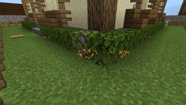 花の咲いたツツジの葉(生垣)